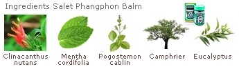 Ingredients used in the balm Thai Salet Phangphon